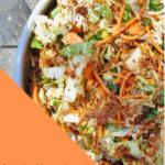 Vegan Kimchi Lacto Fermentation